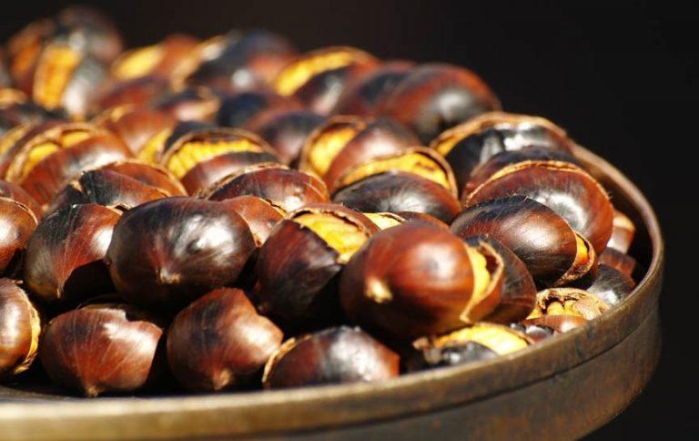 Tìm hiểu về việc ăn hạt dẻ nhiều có bị mập hay không?